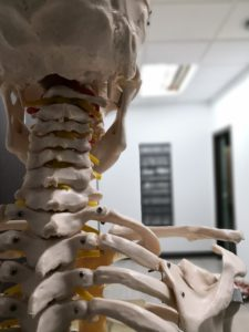 chiropractor in san jose, alternative to chiropractic