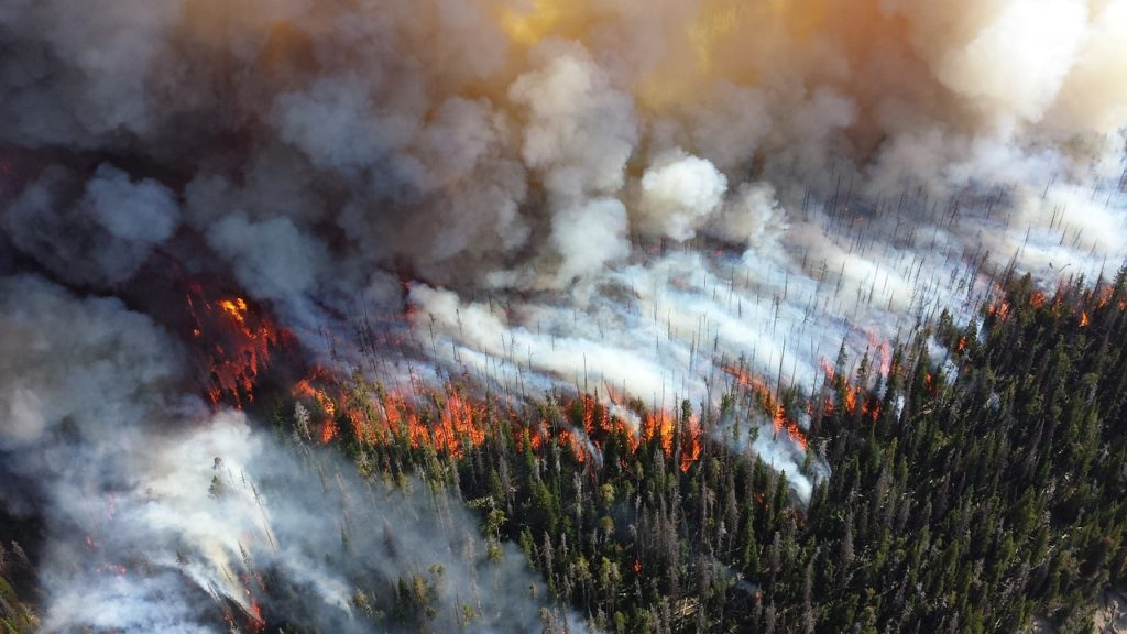 How Wildfire Smoke Can Impact Your Health | Muscle Activation San Jose