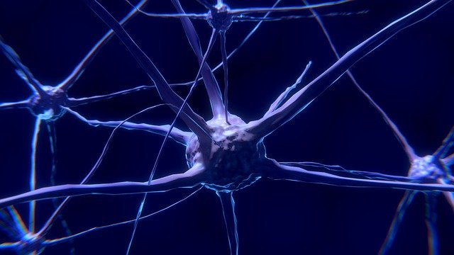 What is Peripheral Neuropathy? | Muscle Activation San Jose